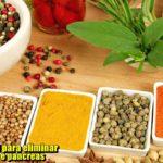 Tratamento natural para eliminar gordura no figado e pancreas