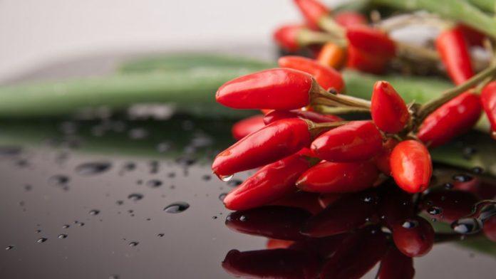 Benefícios da pimenta malagueta